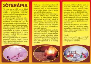 bellap (2) (1)